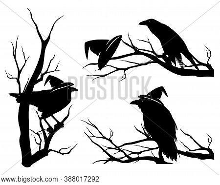 Black Raven Bird Wearing Witch Hat Sitting On Bare Tree Branch - Halloween Theme Vector Design Set