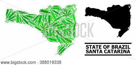 Drugs Mosaic And Solid Map Of Santa Catarina State. Vector Map Of Santa Catarina State Is Formed Of