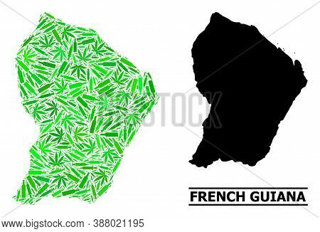 Drugs Mosaic And Usual Map Of French Guiana. Vector Map Of French Guiana Is Designed With Random Syr