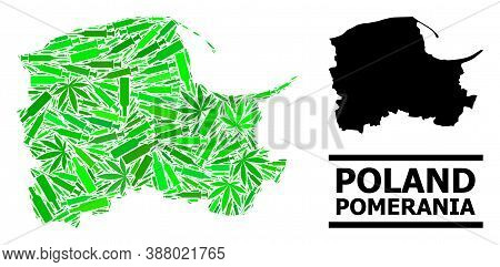 Addiction Mosaic And Solid Map Of Pomerania Province. Vector Map Of Pomerania Province Is Made Of Sc