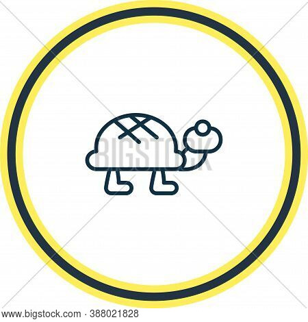 Vector Illustration Of Turtle Icon Line. Beautiful Animals Element Also Can Be Used As Tortoise Icon
