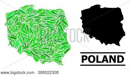 Drugs Mosaic And Solid Map Of Poland. Vector Map Of Poland Is Shaped With Randomized Inoculation Ico