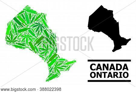 Drugs Mosaic And Usual Map Of Ontario Province. Vector Map Of Ontario Province Is Formed Of Scattere
