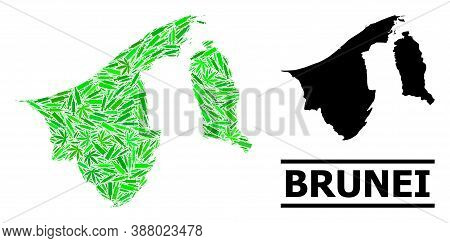 Drugs Mosaic And Usual Map Of Brunei. Vector Map Of Brunei Is Shaped From Randomized Injection Needl