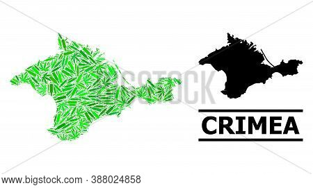 Drugs Mosaic And Usual Map Of Crimea. Vector Map Of Crimea Is Created With Randomized Vaccine Doses,