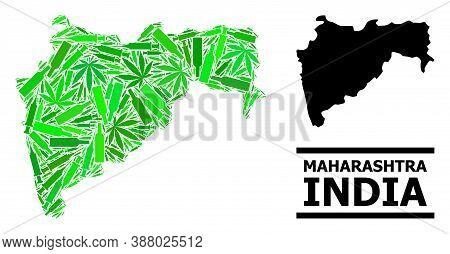 Addiction Mosaic And Usual Map Of Maharashtra State. Vector Map Of Maharashtra State Is Designed Fro