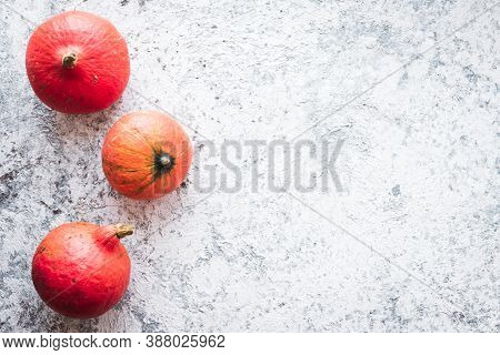 Bright Autumn Pumpkins On Grey Background With Copy Space For Text. Beautiful Autumn Frame. Mockup F