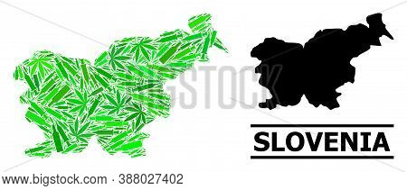 Addiction Mosaic And Usual Map Of Slovenia. Vector Map Of Slovenia Is Formed Of Scattered Injection