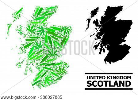 Addiction Mosaic And Solid Map Of Scotland. Vector Map Of Scotland Is Done From Randomized Vaccine D