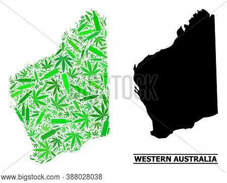 Drugs Mosaic And Solid Map Of Western Australia. Vector Map Of Western Australia Is Designed With Ra