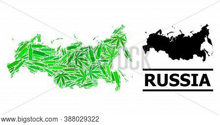 Addiction Mosaic And Solid Map Of Russia. Vector Map Of Russia Is Constructed From Scattered Inocula