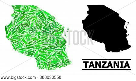 Addiction Mosaic And Solid Map Of Tanzania. Vector Map Of Tanzania Is Organized From Randomized Vacc