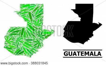 Addiction Mosaic And Usual Map Of Guatemala. Vector Map Of Guatemala Is Designed With Randomized Vac