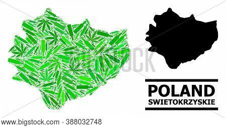 Drugs Mosaic And Usual Map Of Swietokrzyskie Province. Vector Map Of Swietokrzyskie Province Is Shap
