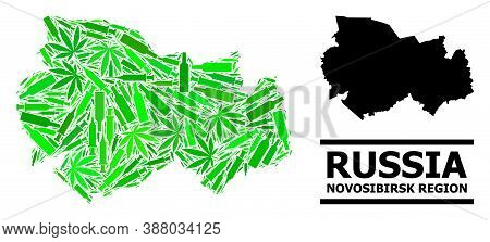 Drugs Mosaic And Solid Map Of Novosibirsk Region. Vector Map Of Novosibirsk Region Is Formed From Ra