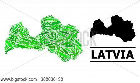 Drugs Mosaic And Usual Map Of Latvia. Vector Map Of Latvia Is Made From Scattered Injection Needles,