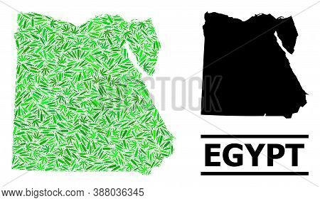 Addiction Mosaic And Usual Map Of Egypt. Vector Map Of Egypt Is Composed Of Scattered Vaccine Symbol