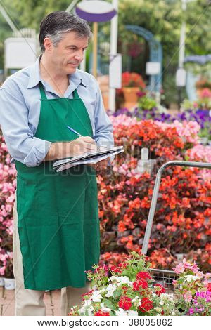 Man doing stocktaking in garden center