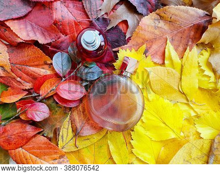 Two Bottles Of Perfume On Bright Autumn Leaves. Eau De Toilette. Fall Flatlay, Mockup, Top View.