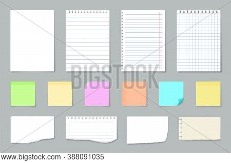 Paper Notes. Copybook Linear Pages Lists Of Notebooks Different Sizes Stripped Notes Vector