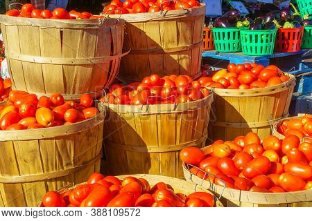 Tomatoes And Other Vegtables On Sale In The Jean-talon Market Market, Little Italy District, Montrea