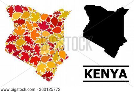 Mosaic Autumn Leaves And Usual Map Of Kenya. Vector Map Of Kenya Is Shaped With Random Autumn Maple
