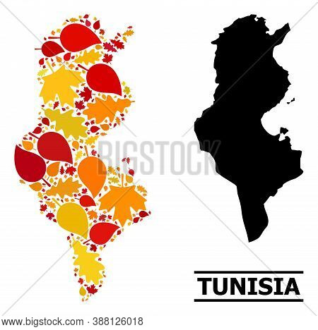 Mosaic Autumn Leaves And Usual Map Of Tunisia. Vector Map Of Tunisia Is Designed Of Randomized Autum