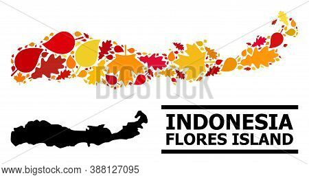 Mosaic Autumn Leaves And Solid Map Of Indonesia - Flores Island. Vector Map Of Indonesia - Flores Is