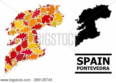 Mosaic Autumn Leaves And Solid Map Of Pontevedra Province. Vector Map Of Pontevedra Province Is Crea