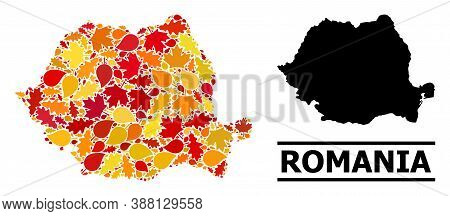 Mosaic Autumn Leaves And Solid Map Of Romania. Vector Map Of Romania Is Made Of Random Autumn Maple