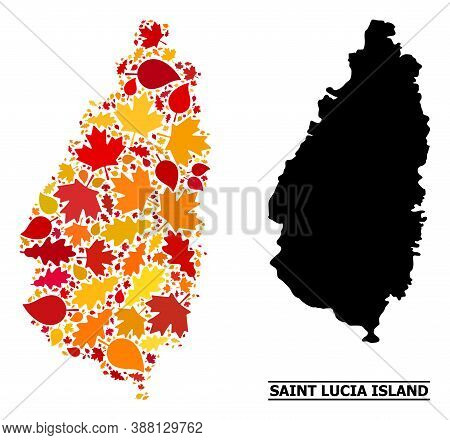 Mosaic Autumn Leaves And Solid Map Of Saint Lucia Island. Vector Map Of Saint Lucia Island Is Constr
