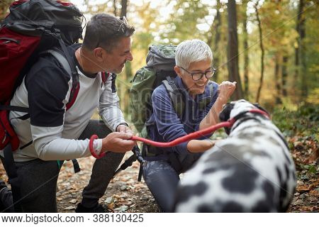 Senior couple hiking with the dog in the woods; Active retirment lifestyle