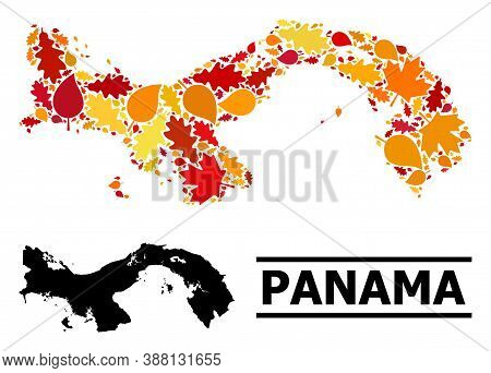 Mosaic Autumn Leaves And Usual Map Of Panama. Vector Map Of Panama Is Created Of Randomized Autumn M