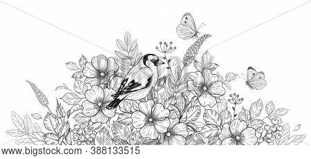 Hand Drawn Goldfinch Sitting Among Wildflowers And Flying Butterflies. Black And White Illustration