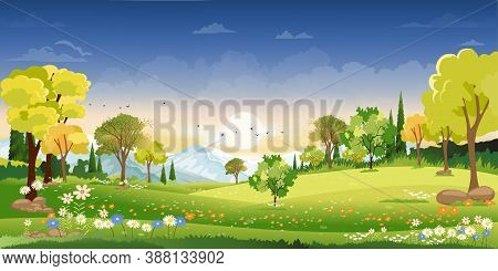 Spring Landscape In Countryside With Green Meadow On Hills With Blue Sky, Vector Summer Or Spring La