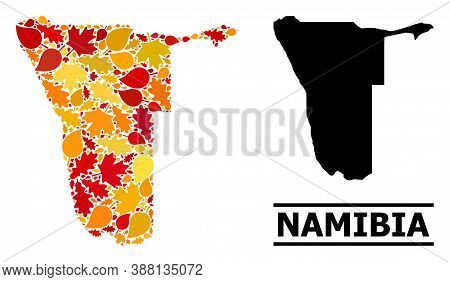 Mosaic Autumn Leaves And Solid Map Of Namibia. Vector Map Of Namibia Is Organized From Random Autumn