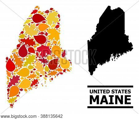 Mosaic Autumn Leaves And Solid Map Of Maine State. Vector Map Of Maine State Is Done From Scattered