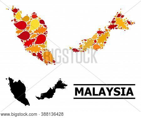 Mosaic Autumn Leaves And Usual Map Of Malaysia. Vector Map Of Malaysia Is Shaped From Random Autumn