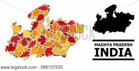 Mosaic Autumn Leaves And Solid Map Of Madhya Pradesh State. Vector Map Of Madhya Pradesh State Is Sh