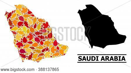 Mosaic Autumn Leaves And Usual Map Of Saudi Arabia. Vector Map Of Saudi Arabia Is Designed Of Scatte
