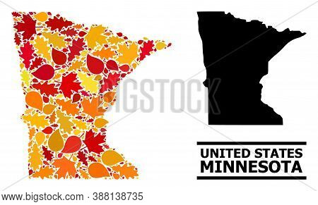 Mosaic Autumn Leaves And Solid Map Of Minnesota State. Vector Map Of Minnesota State Is Shaped With