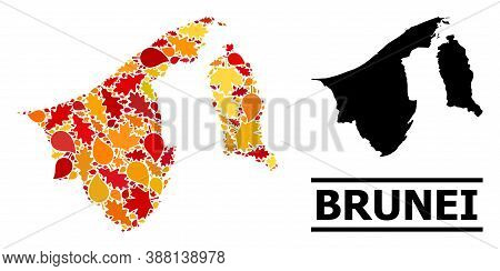 Mosaic Autumn Leaves And Solid Map Of Brunei. Vector Map Of Brunei Is Organized Of Scattered Autumn