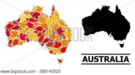 Mosaic Autumn Leaves And Usual Map Of Australia. Vector Map Of Australia Is Created With Random Autu