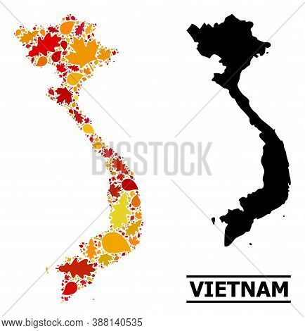 Mosaic Autumn Leaves And Usual Map Of Vietnam. Vector Map Of Vietnam Is Composed Of Random Autumn Ma
