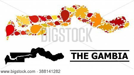 Mosaic Autumn Leaves And Usual Map Of The Gambia. Vector Map Of The Gambia Is Formed Of Random Autum