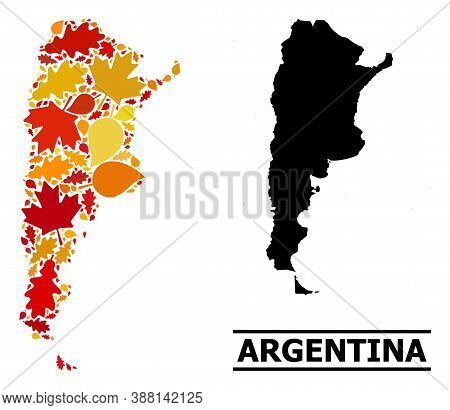 Mosaic Autumn Leaves And Solid Map Of Argentina. Vector Map Of Argentina Is Constructed From Random