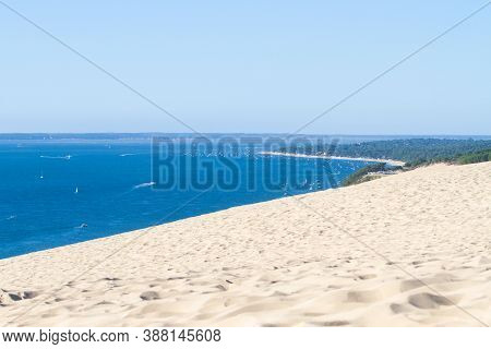 Water, Trees And Sand At The Dune Of Pilat