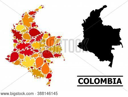 Mosaic Autumn Leaves And Usual Map Of Colombia. Vector Map Of Colombia Is Organized Of Random Autumn