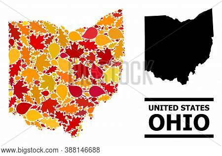 Mosaic Autumn Leaves And Solid Map Of Ohio State. Vector Map Of Ohio State Is Organized From Scatter