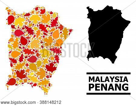 Mosaic Autumn Leaves And Solid Map Of Penang Island. Vector Map Of Penang Island Is Organized Of Ran